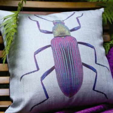 Cojin Escarabajo